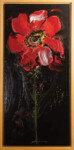 44 APOSTOLOS YAYANNOS - Red in black
